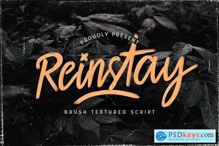 Reinstay - Brush Script Font 5129930