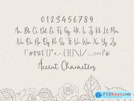 Zaniola Lavolce Modern Calligraphy Font