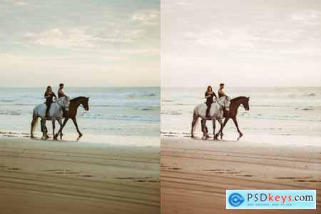 Beach Lovers Desktop Lightroom Presets