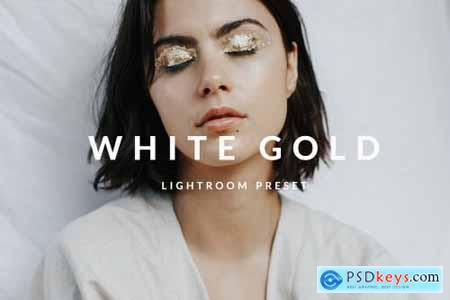 White Gold Lightroom Desktop Preset 5033142