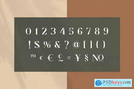 Cronisse - Modern Display Serif