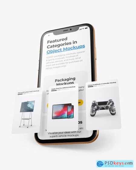 Apple iPhone 11 Pro w- Cards Mockup 65051