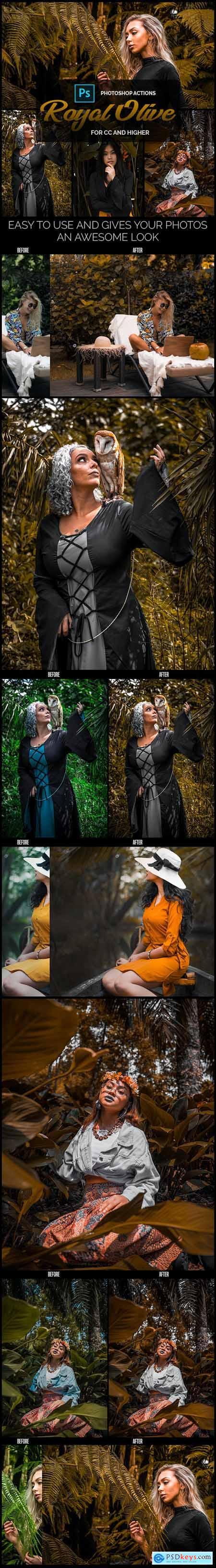 Royal Olive - Premium Photoshop Actions 26566682
