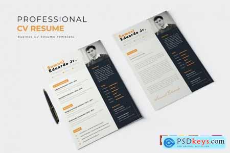 Professional Job - CV & Resume
