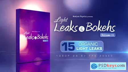 Light Leaks and Bokehs Vol 1 9822840