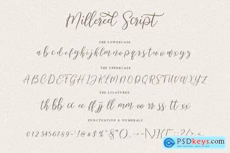 Millered Beauty Font Elegant 5244783