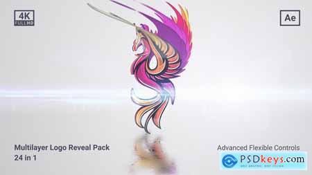 Clean Multilayer Logo Pack 27817646