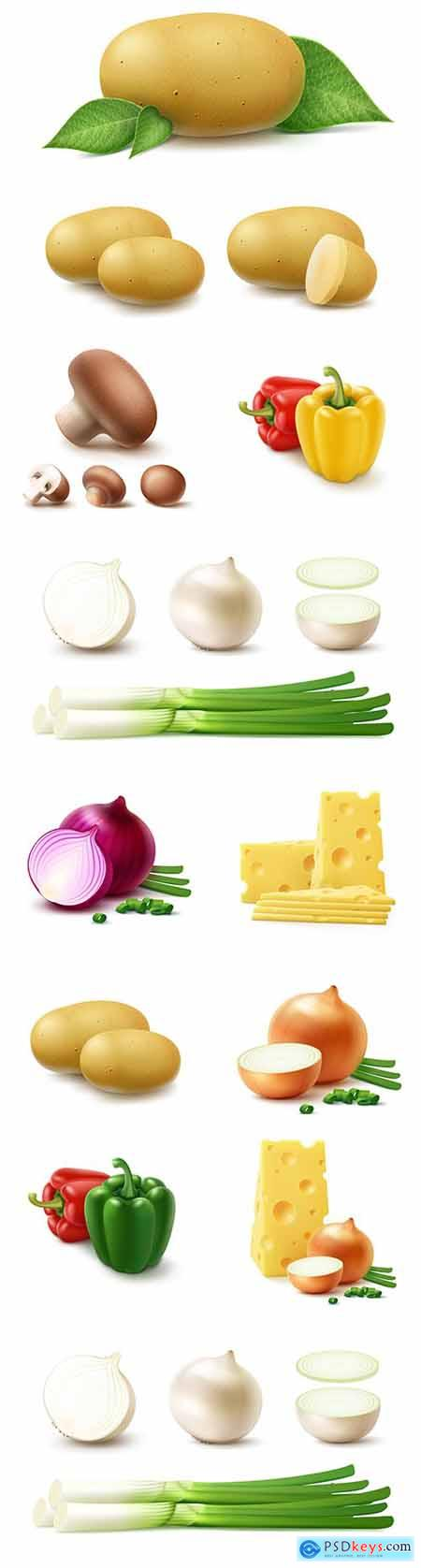 Vegetables whole and chopped 3d realistic illustrations