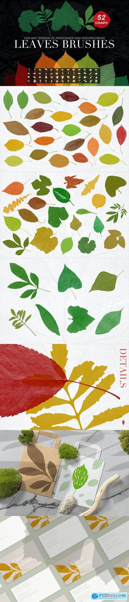 52 Leaves Photoshop Stamp Brushes 27969587