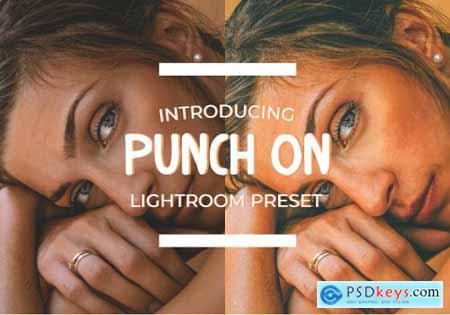 Punch On Lightroom Preset 4896816