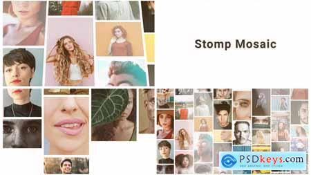 Mosaic Stomp Multi Photo Logo 28401012