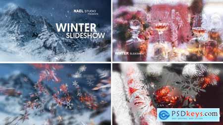 Winter Slideshow 13828641