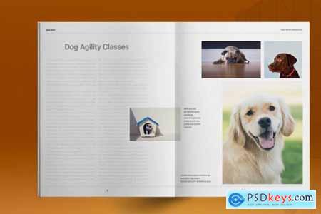 Dog Hotel Brochure Template 5297446
