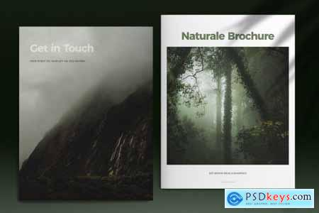 Green Lifestyle Brochure Layout 5297322