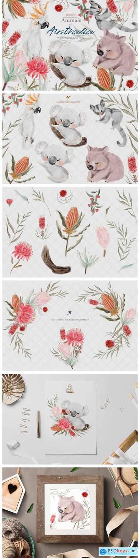 Australia Animals Illustration 5580993