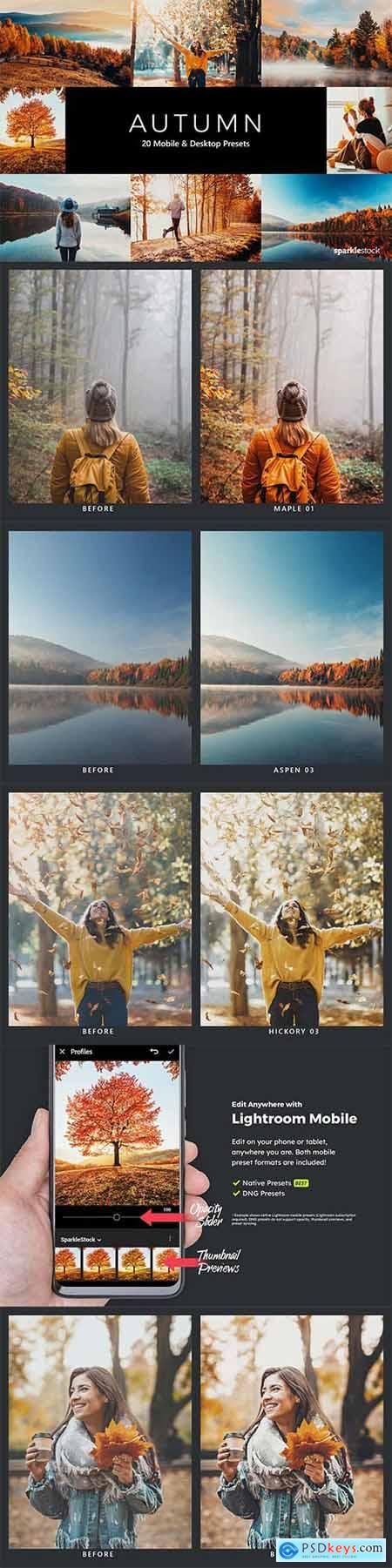 20 Autumn Lightroom Presets & LUTs