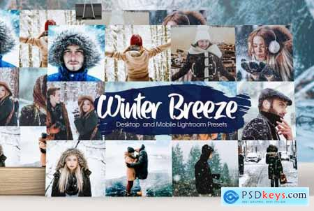 Winter Breeze Lightroom Presets 5282928