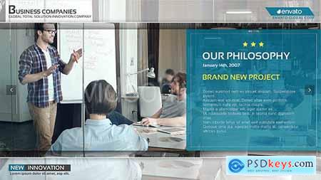 Corporate Business Profile 20479374