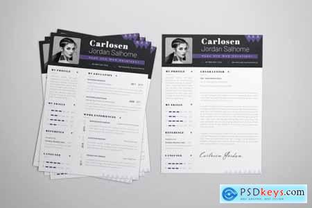Developer Pro CV & Resume