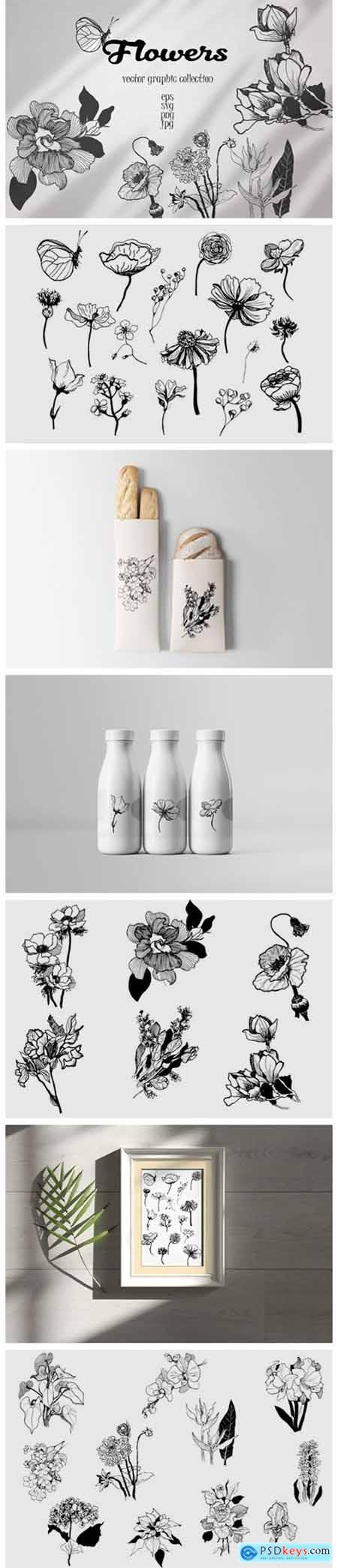Vector Collection of Hand-drawn Flowers 5555484