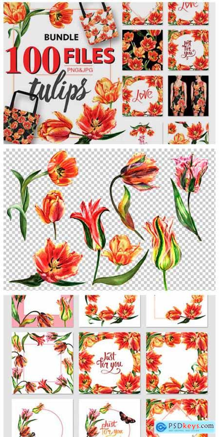 Tulip Red PNG Watercolor Flower Set 4756402