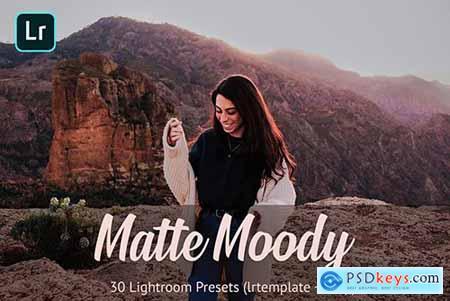 Matte Moody Presets Lightroom 4811215