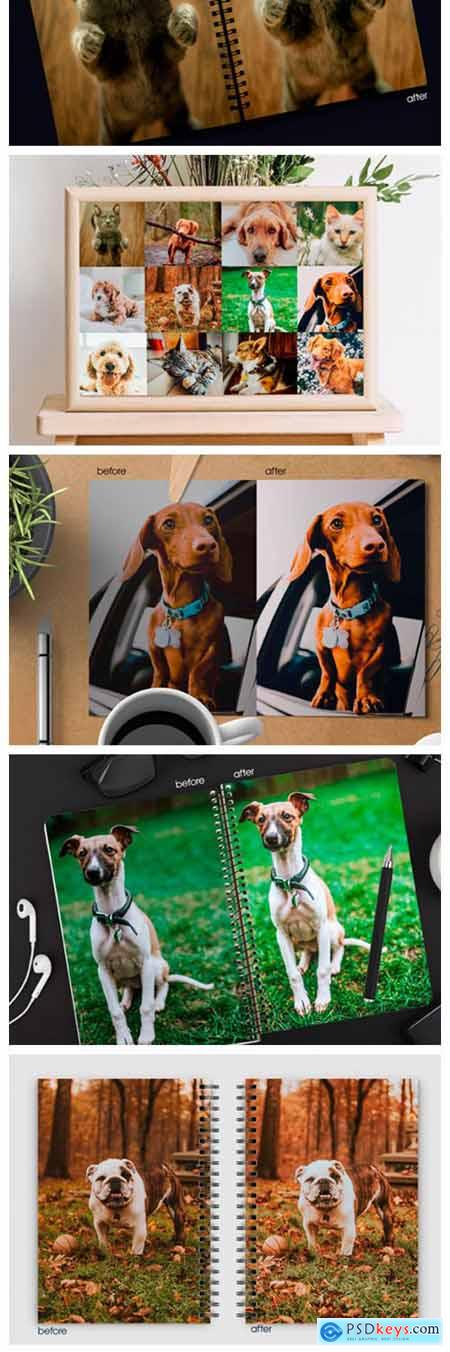 Cute Pets Lightroom Presets 6082510