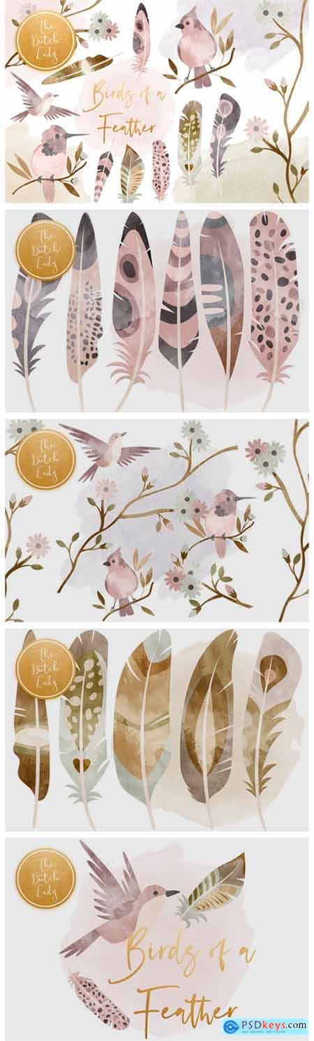 Birds & Feathers Clipart Set 6115115