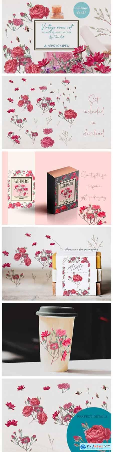 Pretty Rose Vector Clipart Set 6137398