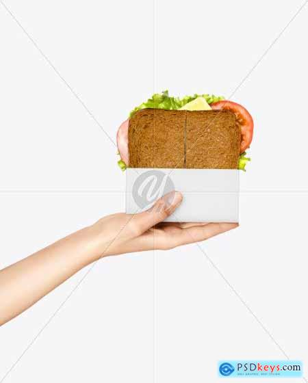 Sandwich Pack in a Hand Mockup 68904