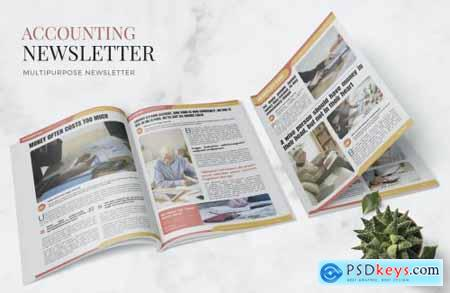 The Accounting News Newsletter