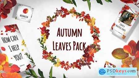 Autumn Leaves Pack 29195640