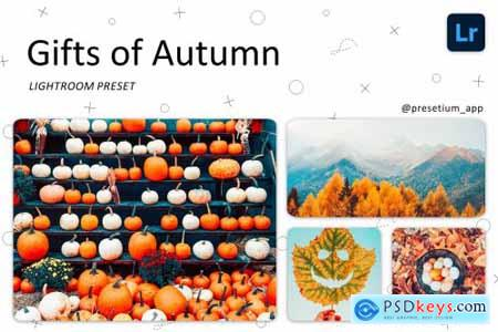 Gifts of Autumn - Lightroom Presets 5227452