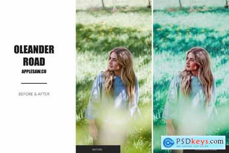 Oleander Road Lightroom Presets 5270591