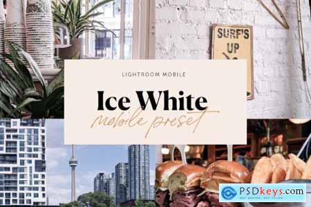 6 Pack Lightroom Preset Bundle 5487364