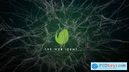 Webs Logo Reveal 29281835