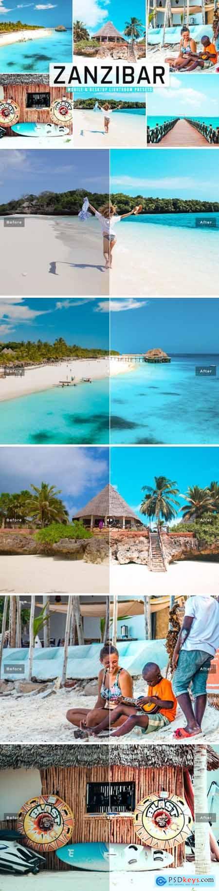 Zanzibar Pro Lightroom Presets 6576750