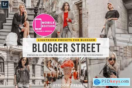 Blogger Street Lightroom Presets 3149941