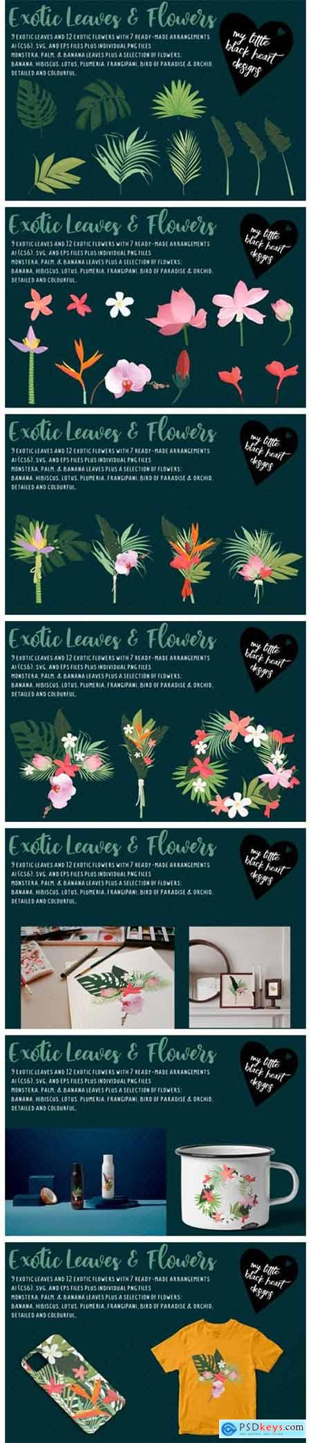 Exotic Leaves and Flowers 6591520