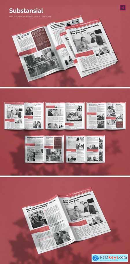 Substansial Business - Newsletter Template