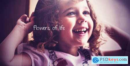 Flowers of life 419575