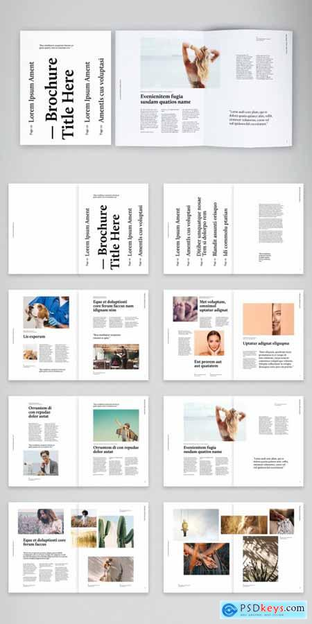 Testimonials and Stories Brochure Layout 392090096