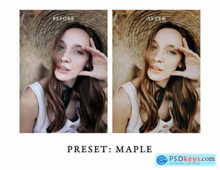 Warm + Moody Lightroom Presets II 5301033