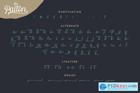 The Paiton Modern Script Font 5509358