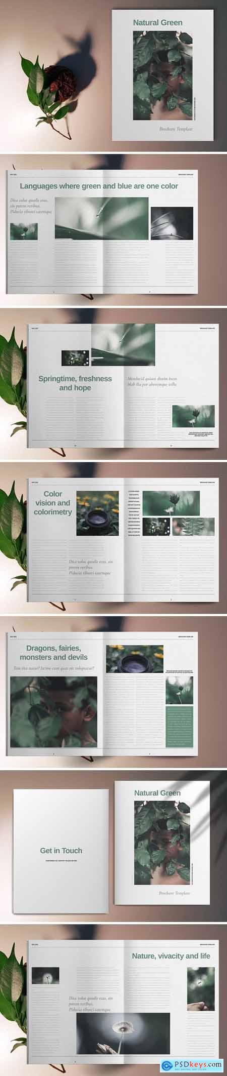 Green Natural Brochure Template 5667399