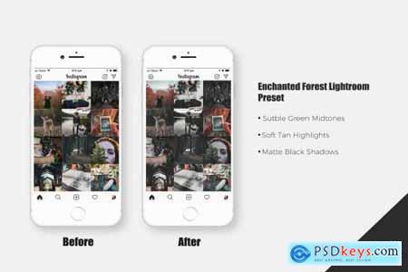 Enchanted Forest Lightroom Presets