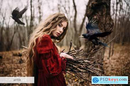 Bird Overlays Photoshop 4934539