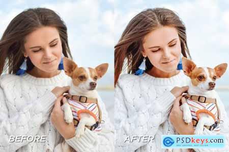 5 Dog Blogger Lightroom Presets 5701593