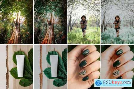 100 Moody Green Preset 4998928