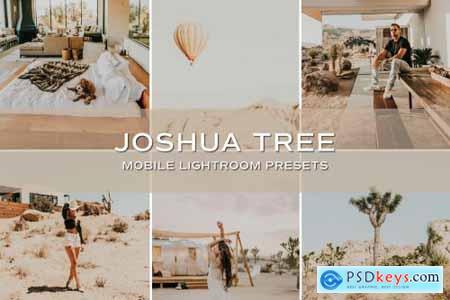 5 Joshua Tree Lightroom Presets 5701728